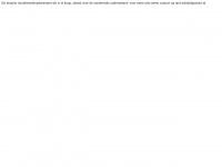 studerendeondernemer.nl