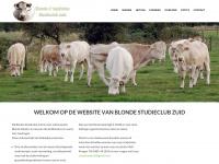 studieclubzuid.nl
