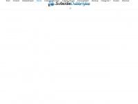 subsidiesdubbelglas.nl
