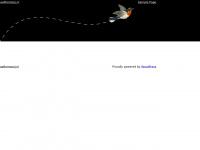 Homepage website - aafkemooij.nl