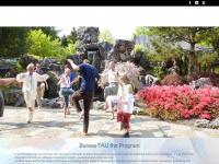 Taoartunlimited.nl - TAU Tao Art Unlimited: Welkom