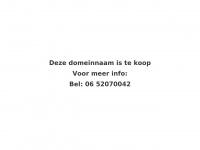 taxi-tilburg.nl