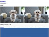 beamerverhuurnederland.nl