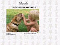 thechinesewrinkle.nl