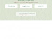thummelhus.nl