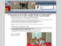 toka-kilima.nl