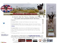 Varkhond Bull Terrier Kennel