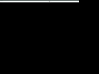 vz-verzekeringen.nl