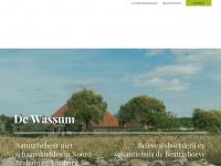 wassum.nl - Onjuiste verwijzing domein Byte b.v.