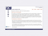 website-consulting.nl