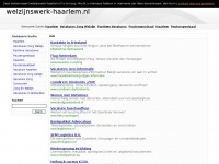 Welzijnswerk-haarlem.nl - This domain name has been registered with DomRaider.com