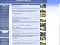 wijdemeersewebkrant.nl