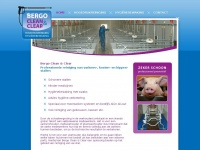 bergocleanandclear.nl