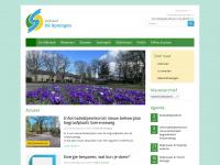 wijkraaddesprengen.nl