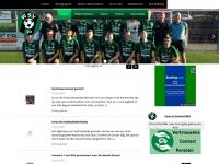 wsv1930.nl