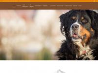 Bernersennen.nl - Thuis - Vereniging de Berner Sennenhond