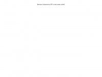 besouw-autoservice.nl
