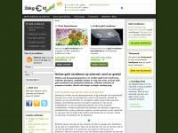 Online geld verdienen op internet | Zakgeldnodig.nl