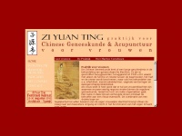 ziyuanting.nl