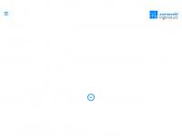 zonneveldingenieurs.nl