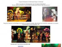 tropischthemafeest.be