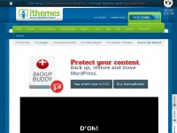 ithemes.com