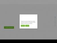 rapidcircle.com