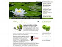 MB WEB-development: een frisse kijk op websites, webshops en internet marketing