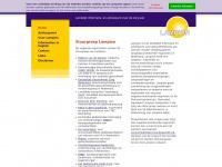Landelijk informatie- en adviespunt over de zorg aan ongedocumenteerden = LAMPION