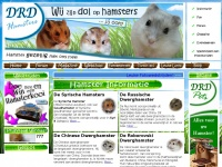 DRD Hamsters – Alles over Hamsters