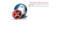 Evenementen op Ameland uitgebracht door 't  Amelander Nieuws en foto / persbureau janspoelstra.nl