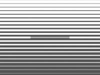 sulmon.com