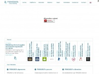 Pangaea Digital Agency | Your Online Success Is Our Goal | Pangaea Digital Agency