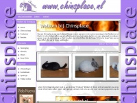 chinsplace.nl