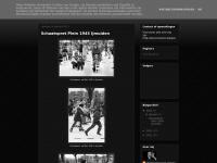 stadsfotograafvelsen2011.blogspot.com