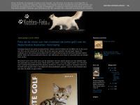 katten-foto.blogspot.com