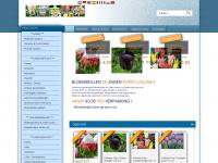 flowerbulb-shop.com