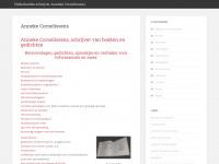 Anneke Cornelissens is creatief schrijver over opvoeden en ondernemen.
