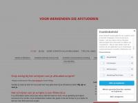 scriptiehulpverlening.nl