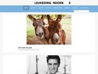 leukedingendoen.nl