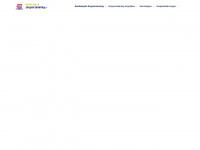 goedkoopstezorgverzekering.nl