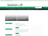 wijkbladprincenhage.net