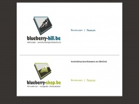 Blueberry-Hil | Kortrijk - Teambuilding, Speleologie, Klimmen, Muurklimmen