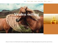 veulenveilingdwingeloo.nl