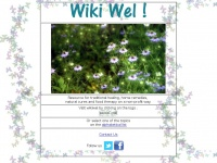 wikiwel.com