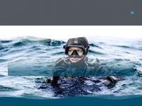 diveraid.com