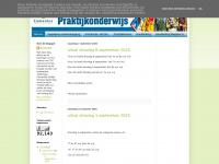comeniuspraktijkonderwijs.blogspot.com
