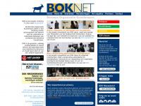 Beroeps Organisatie Kunstenaars (BOK)