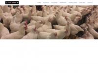 tijsdekoning.nl