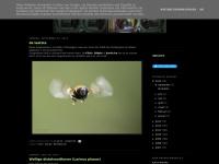 kartix.blogspot.com